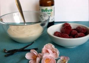 Joghurt mit Himbeeren und Stevia