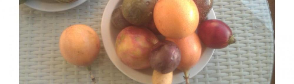 Früchteauswahl
